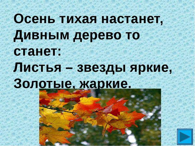 Осень тихая настанет, Дивным дерево то станет: Листья – звезды яркие, Золотые...