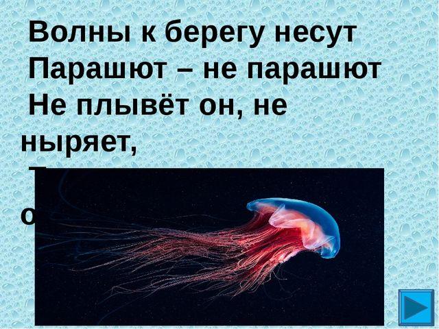 Волны к берегу несут Парашют – не парашют Не плывёт он, не ныряет, Только тр...