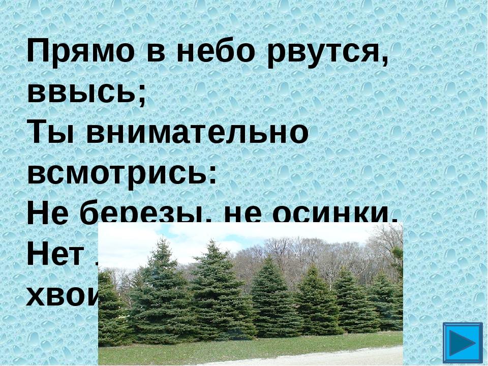 Прямо в небо рвутся, ввысь; Ты внимательно всмотрись: Не березы, не осинки, Н...