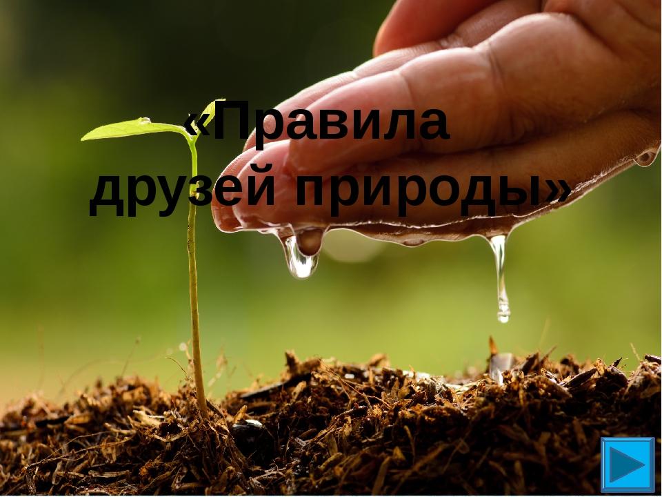 «Правила друзей природы»