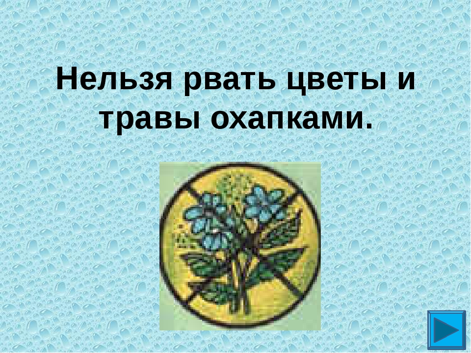 Нельзя рвать цветы и травы охапками.