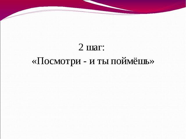 2 шаг: «Посмотри - и ты поймёшь»