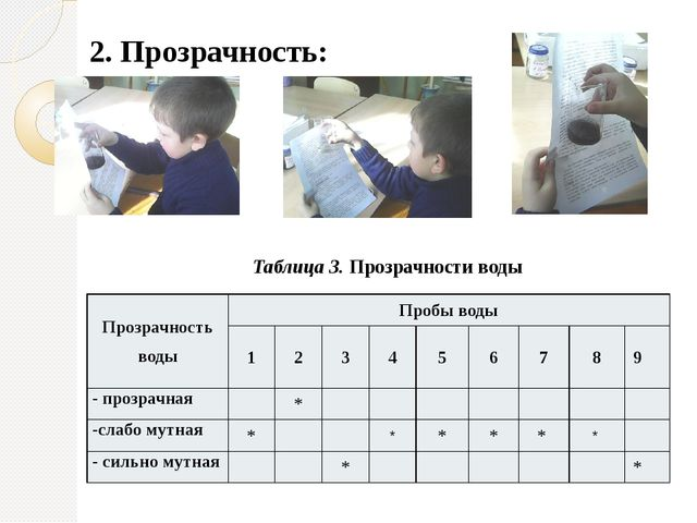 2. Прозрачность: Таблица 3. Прозрачности воды Прозрачностьводы Пробы воды 1 2...