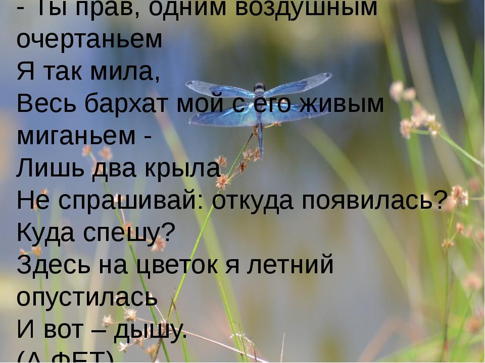 - Ты прав, одним воздушным очертаньем Я так мила, Весь бархат мой с его живым...