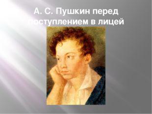 А. С. Пушкин перед поступлением в лицей