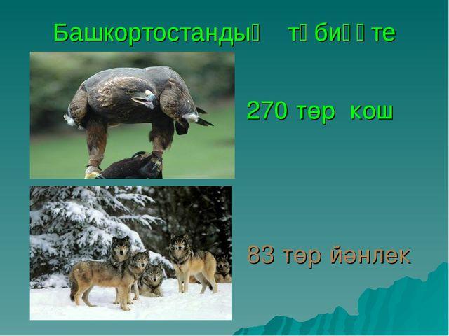 Башкортостандың тәбиғәте 270 төр кош 83 төр йәнлек