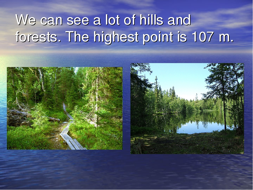 We can see a lot of hills and forests. The highest point is 107 m.