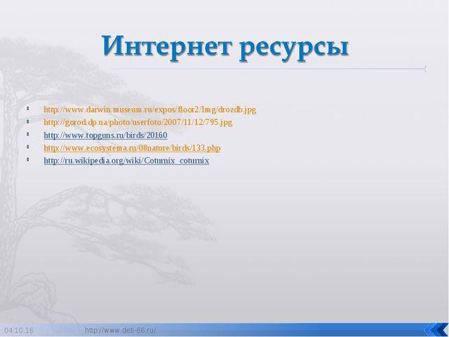 http://www.darwin.museum.ru/expos/floor2/Img/drozdb.jpg http://gorod.dp.ua/ph...
