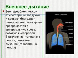 Внешнее дыхание Это газообмен между атмосферным воздухом и кровью, благодаря