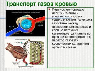 Транспорт газов кровью Перенос кислорода от легких к тканям и углекислого газ