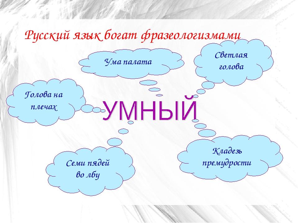 класса языка 7 решебник фразелогизмы русского
