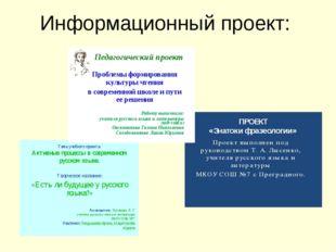 Информационный проект: