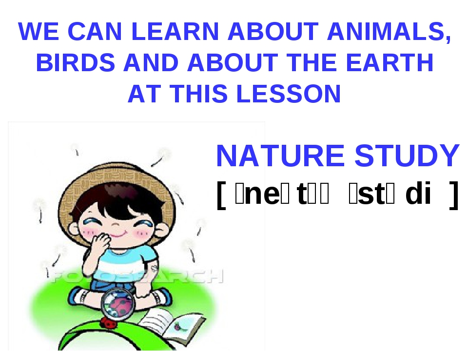 WE CAN LEARN ABOUT ANIMALS, BIRDS AND ABOUT THE EARTH AT THIS LESSON NATURE S...