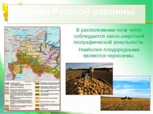 В расположении почв четко соблюдается закон широтной географической зональнос