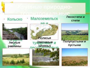 Крупные природно-территориальные комплексы Кольско-Карельская тундрово-таежна