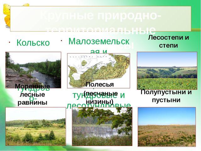 Крупные природно-территориальные комплексы Кольско-Карельская тундрово-таежна...