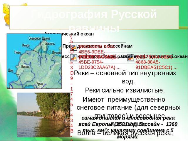 Гидрография Русской равнины Реки – основной тип внутренних вод. Реки сильно и...