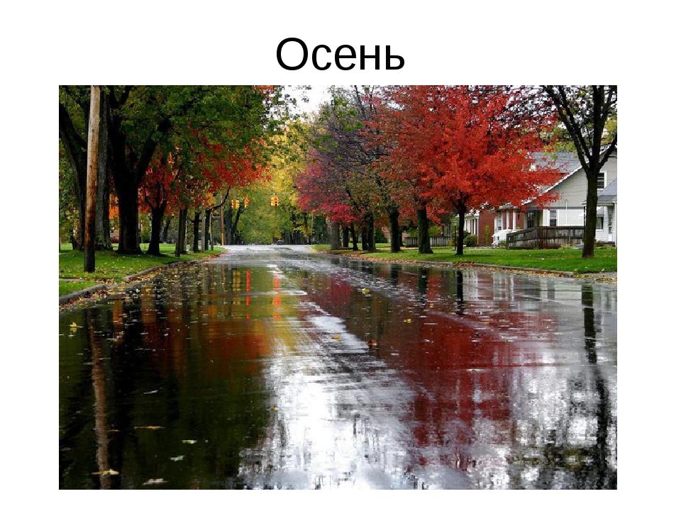 Осень Кк К
