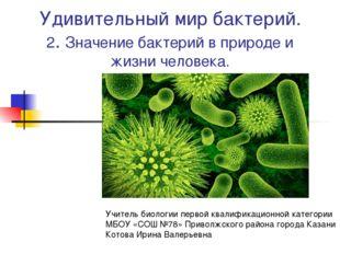 Удивительный мир бактерий. 2. Значение бактерий в природе и жизни человека. У