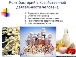 Роль бактерий в хозяйственной деятельности человека Круговорот веществ в прир