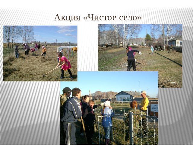 Акция «Чистое село»