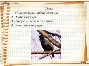 План Удивительный облик скворца Пение скворца Скворец – полезная птица Берег