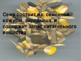 Вывод: Семя состоит из: семенной кожуры, зародыша, и содержит запас питательн