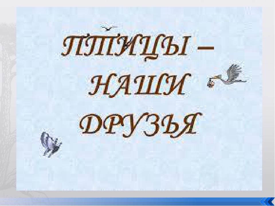 * http://www.deti-66.ru/