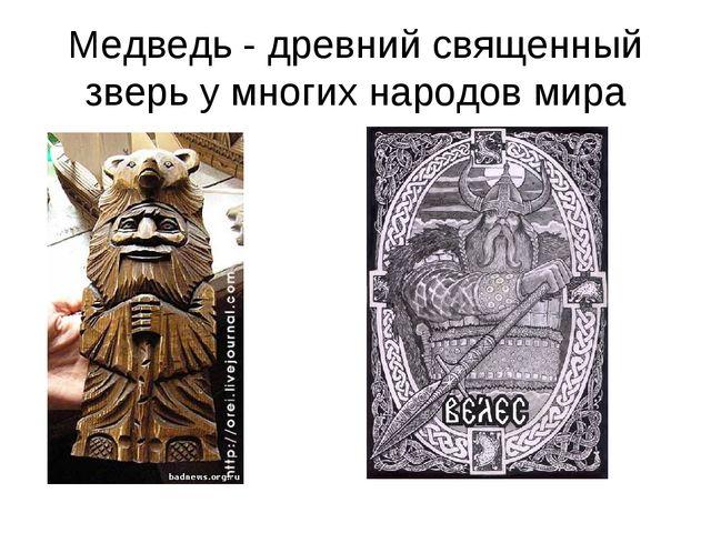Медведь - древний священный зверь у многих народов мира