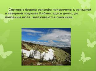 Снеговые формы рельефа приурочены к западной и северной подошве Кабана: здес