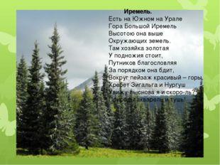 Иремель. Есть на Южном на Урале Гора Большой Иремель Высотою она выше Окружа