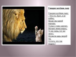Говорил котёнок льву Говорил котёнок льву: - Что-то, брат, я не пойму, Вроде