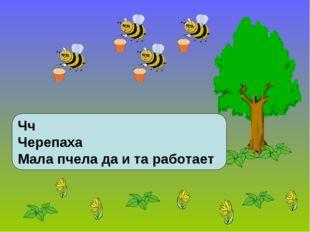 Чч Черепаха Мала пчела да и та работает