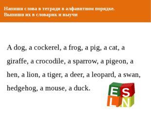 ОТ АВТОРА Напиши слова в тетради в алфавитном порядке. Выпиши их в словарик и