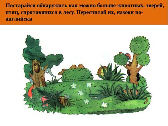 ОТ АВТОРА Постарайся обнаружить как можно больше животных, зверей, птиц, спря...