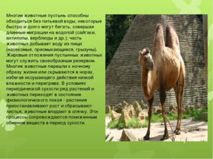 Многие животные пустынь способны обходиться без питьевой воды; некоторые быс