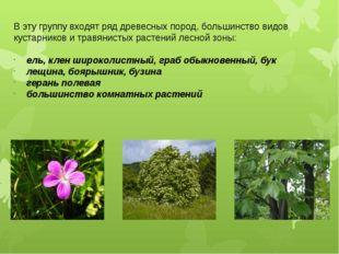В эту группу входят ряд древесных пород, большинство видов кустарников и трав