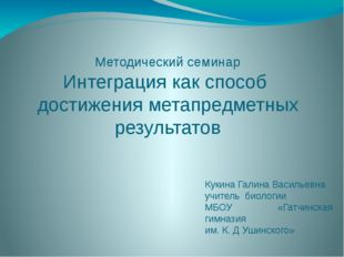 Методический семинар Интеграция как способ достижения метапредметных результа