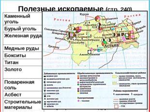 Полезные ископаемые (стр. 240) Каменныйуголь Екибастузскийбассейн Бурыйуголь