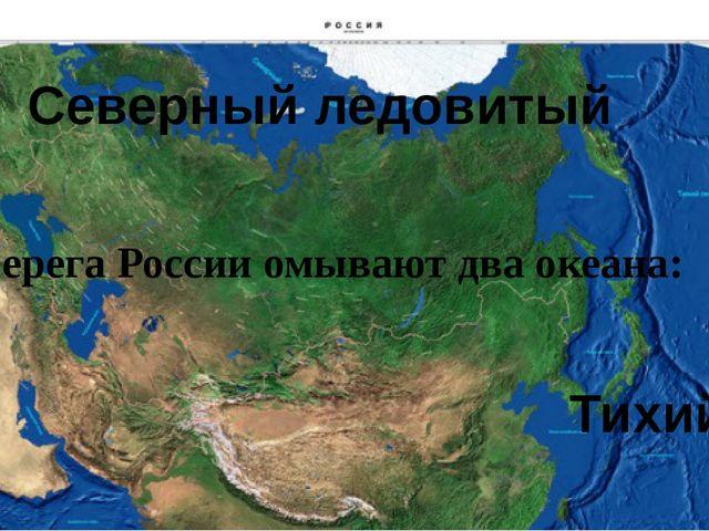 Берега России омывают два океана: Тихий Северный ледовитый