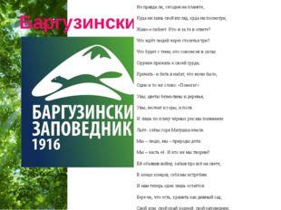 Баргузинский заповедник Не правда ли, сегодня на планете, Куда ни кинь свой в