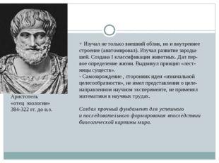 Аристотель «отец зоологии» 384-322 гг. до н.э. + Изучал не только внешний обл