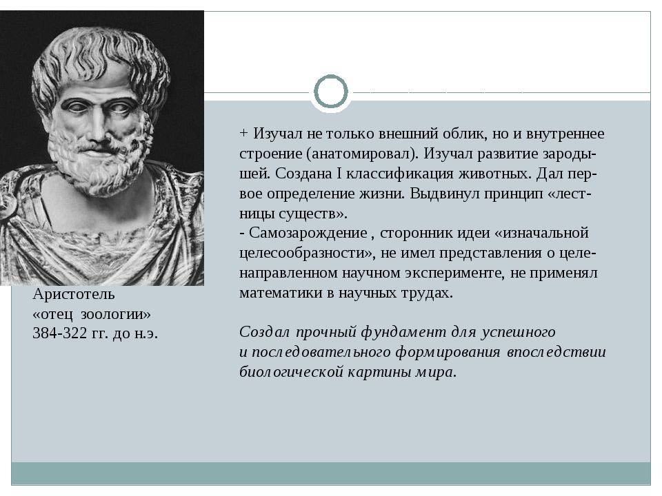 Аристотель «отец зоологии» 384-322 гг. до н.э. + Изучал не только внешний обл...