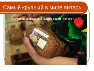 """Самый крупный в мире янтарь """"Бирманский янтарь"""", имеет массу 15 кг 250 г! хра"""