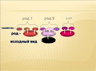 исходный вид род - род 1 род 2 род3 семейство -