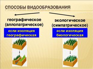 географическое (аллопатрическое) экологическое (симпатрическое) если изоляция