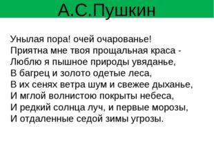 А.С.Пушкин Унылая пора! очей очарованье! Приятна мне твоя прощальная краса -