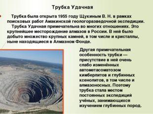 Трубка была открыта 1955 году Щукиным В. Н. в рамках поисковых работ Амакинс