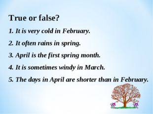 True or false? 1. It is very cold in February. 2. It often rains in spring. 3