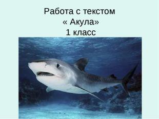 Работа с текстом « Акула» 1 класс